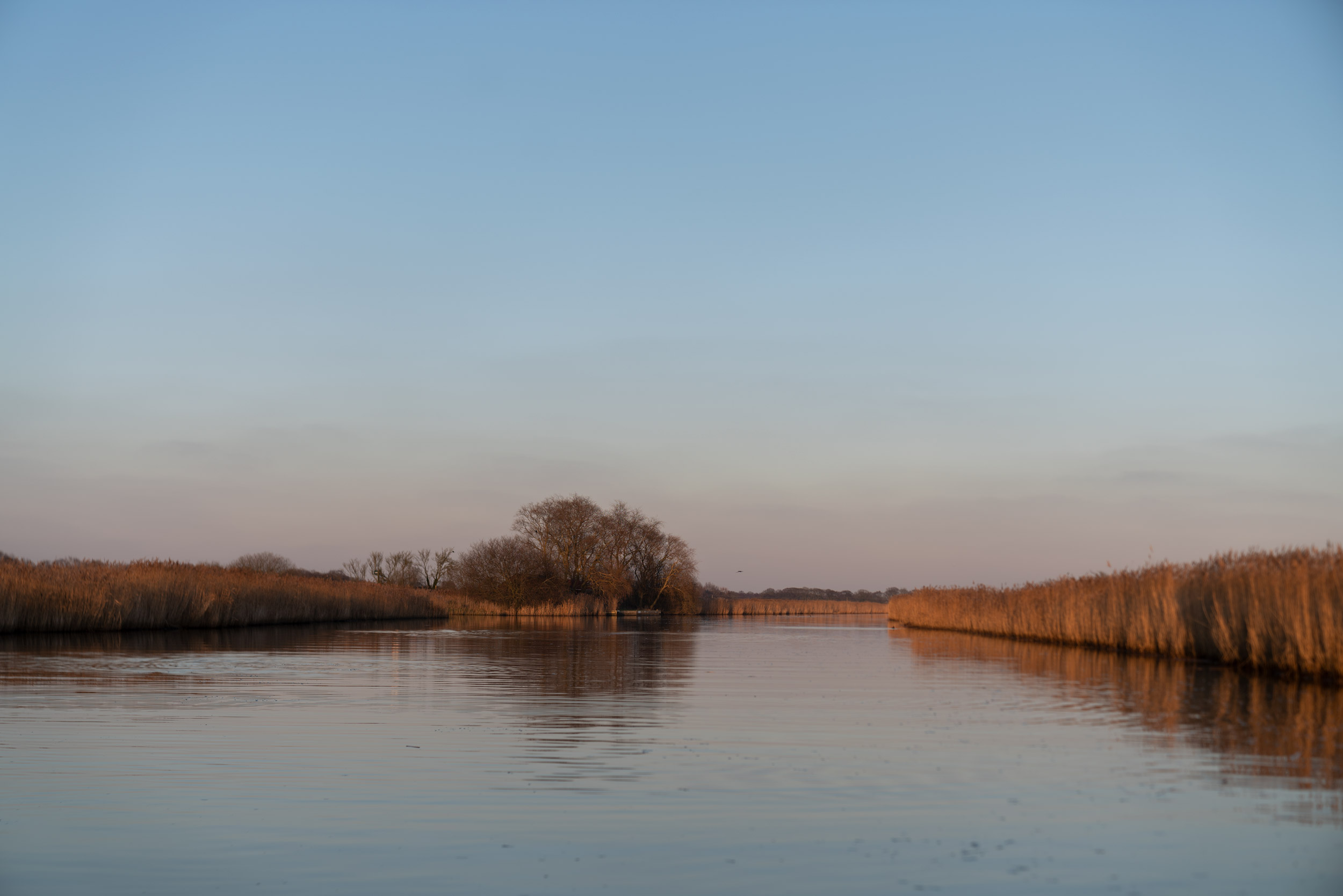 Fiona-Burrage-Norfolk-Broads-Norfolk-River-Thurne.jpg
