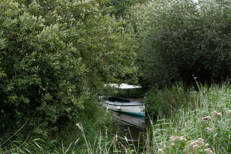 How-Hill-Electric-Eel-Fiona-Burrage-Norfolk-Broads.jpg