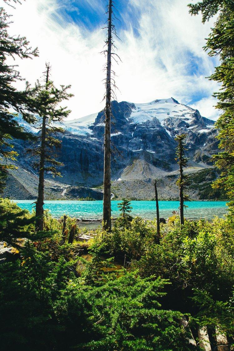 Algo Group British Columbia