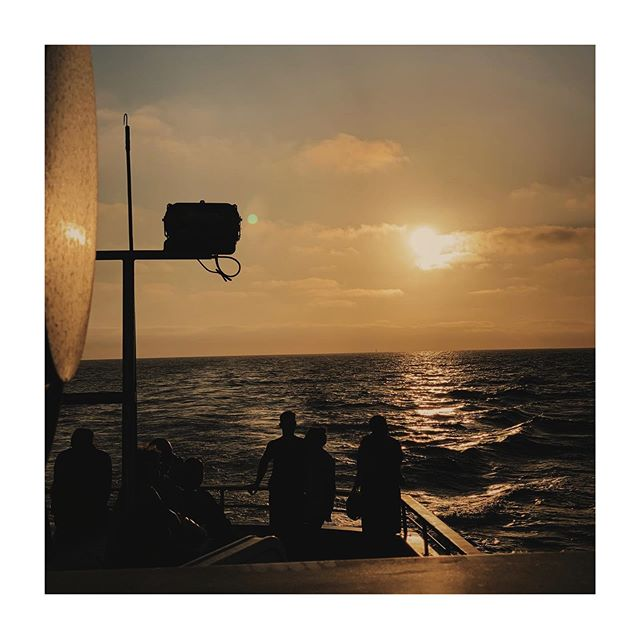 watching whales at sunset with salty lips and my partner in maritime
