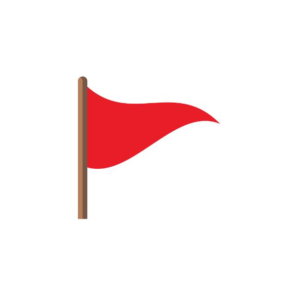 Capture the Flag Logo.png