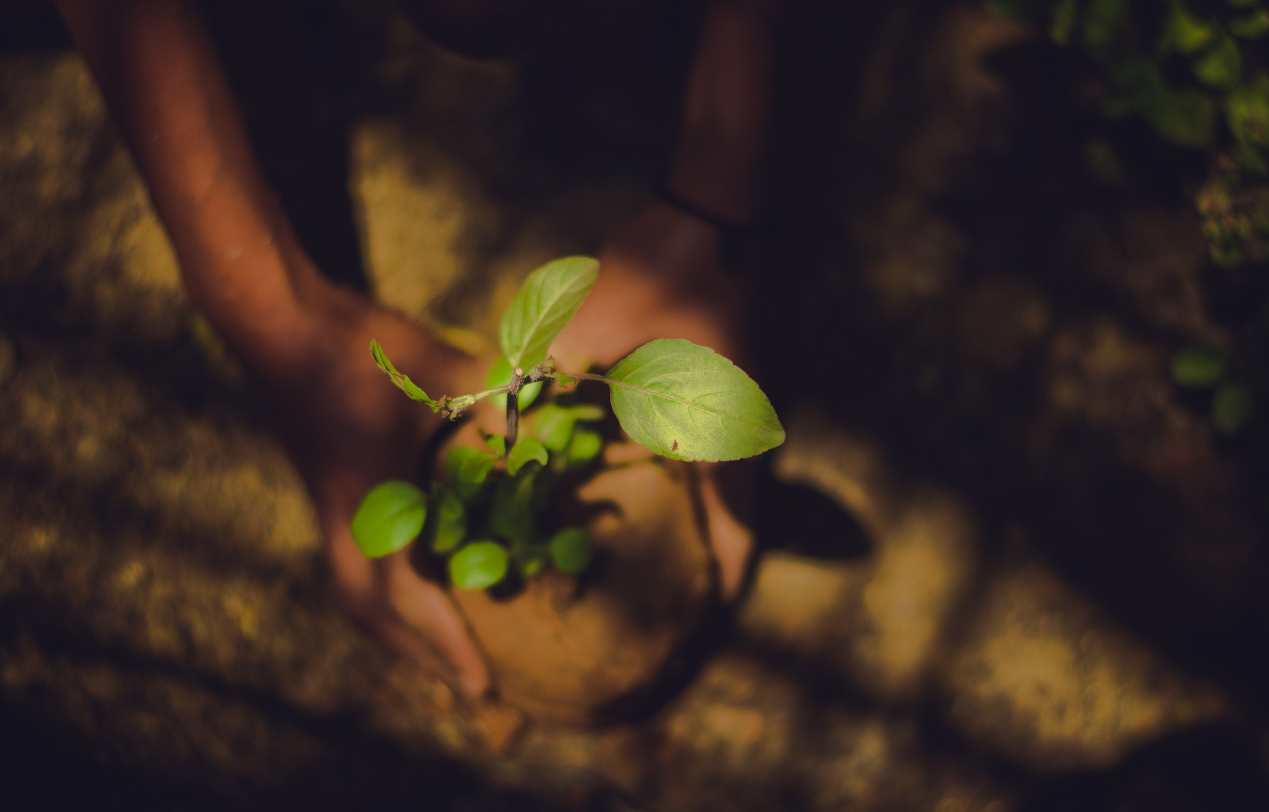....Your partner in environmental sustainability..与您在环境可持续性方面合作..Su socio en sostenibilidad ambiental.... -