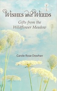Weeds-Wishes-Carole-Rose-Dowhan.jpg