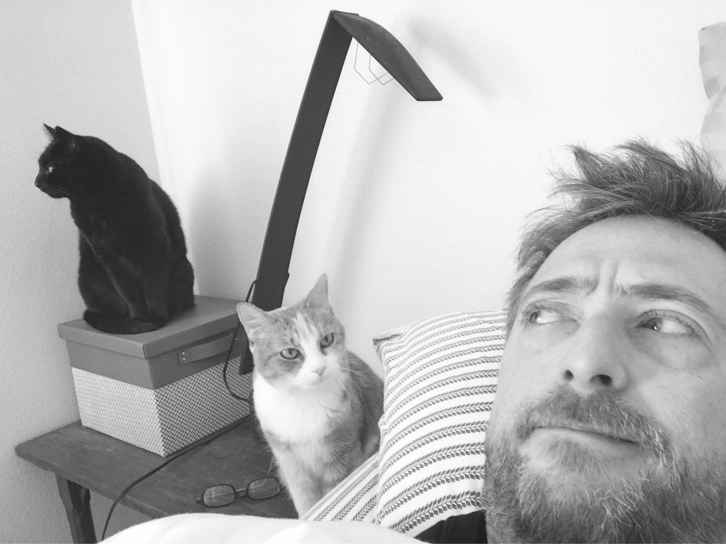 Alarm clocks (Shiloh and Fiona)