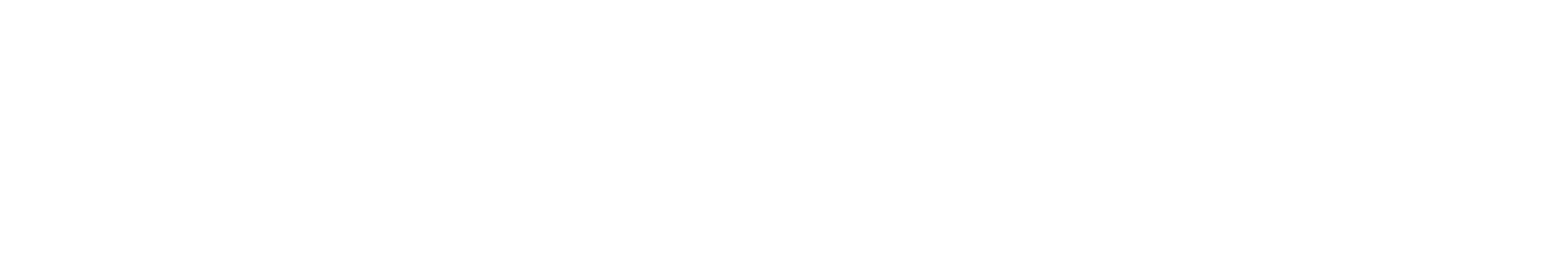REMAX Niagara Logo Final Black no Balloon wide.png
