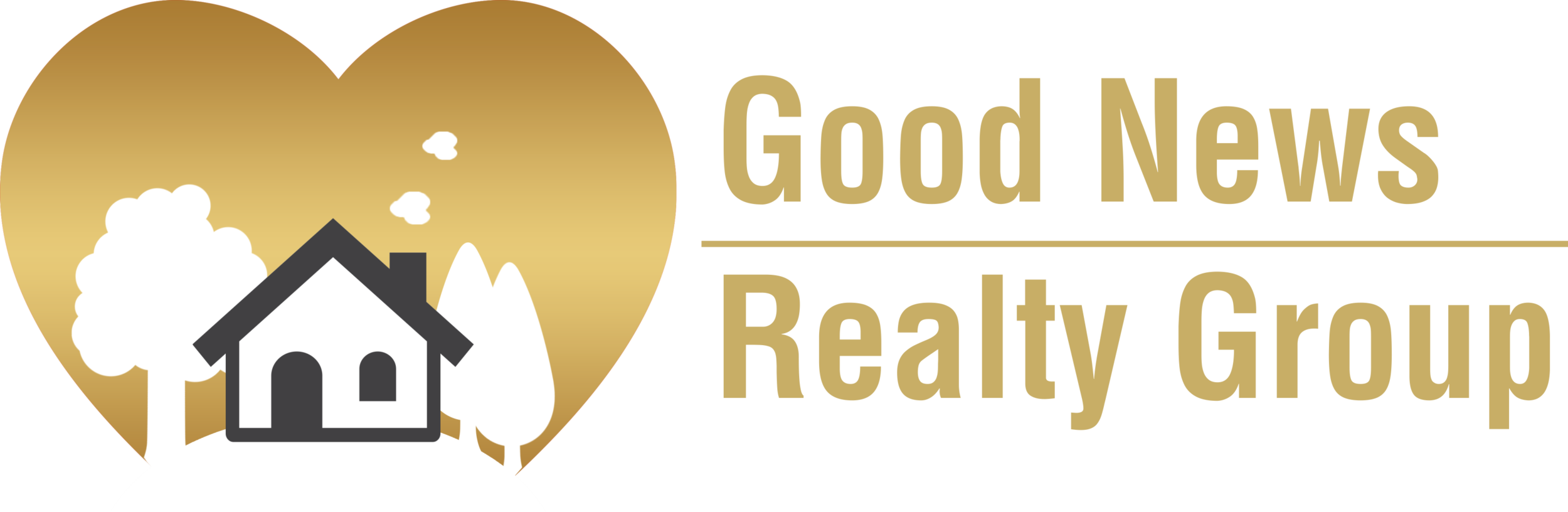 good news group logo horizontal.png