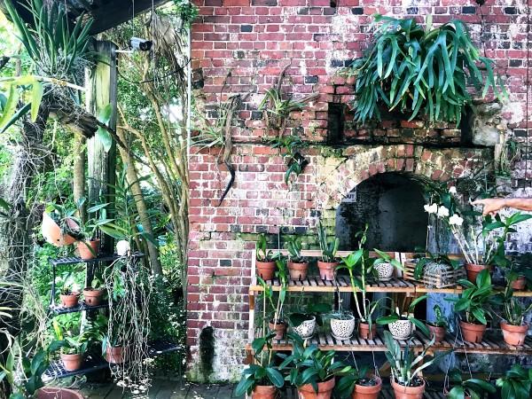 b2ap3_thumbnail_Key-West-Tropical-Forest--Botanical-Garden-2.JPG