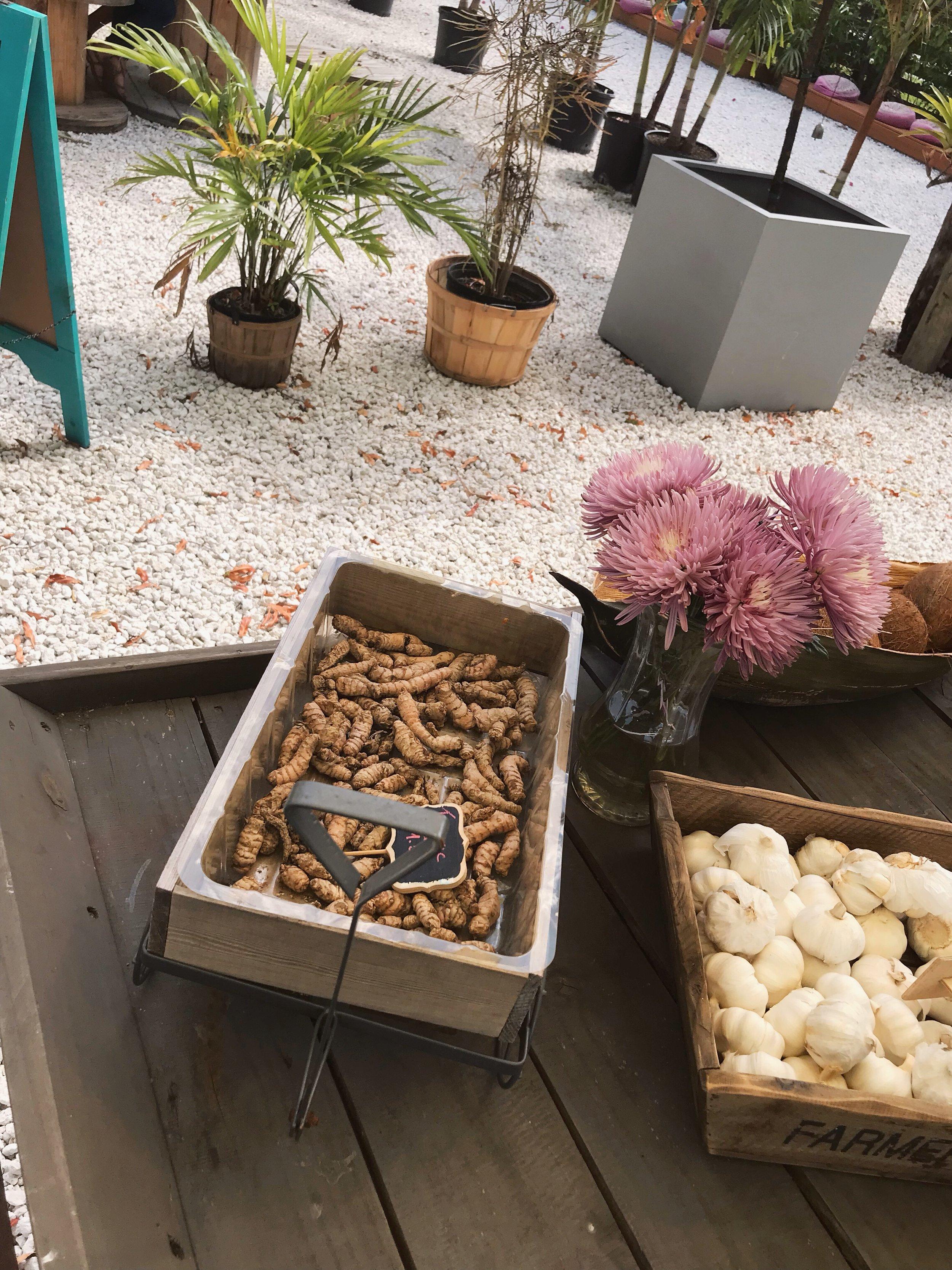aguacate sanctuary vegan miami.JPG
