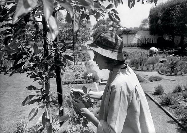 Bunny Mellon in the Garden.