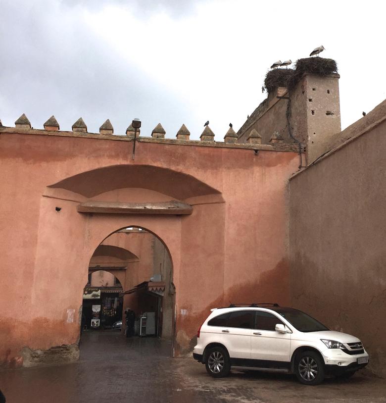 """The """"Rose"""" city- Marrakech, Morocco"""