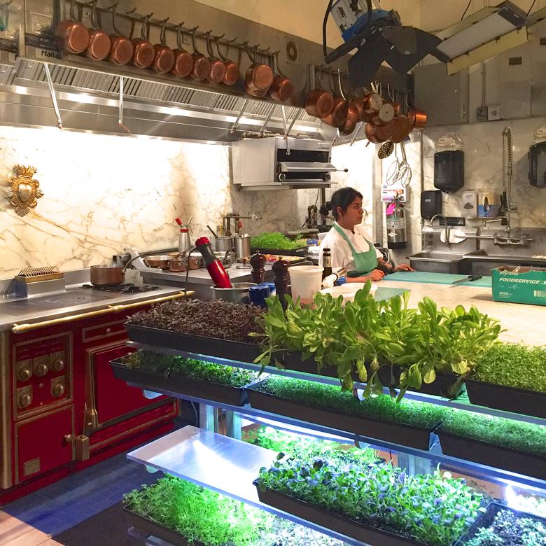 The kitchen at Bouley Botanical