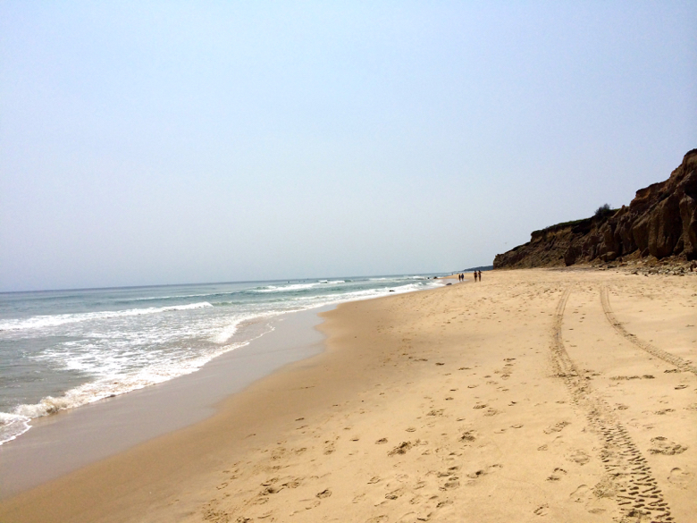 montauk guide-beach