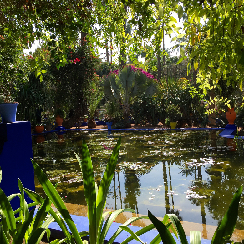 my visit -majorelle gardens oasis