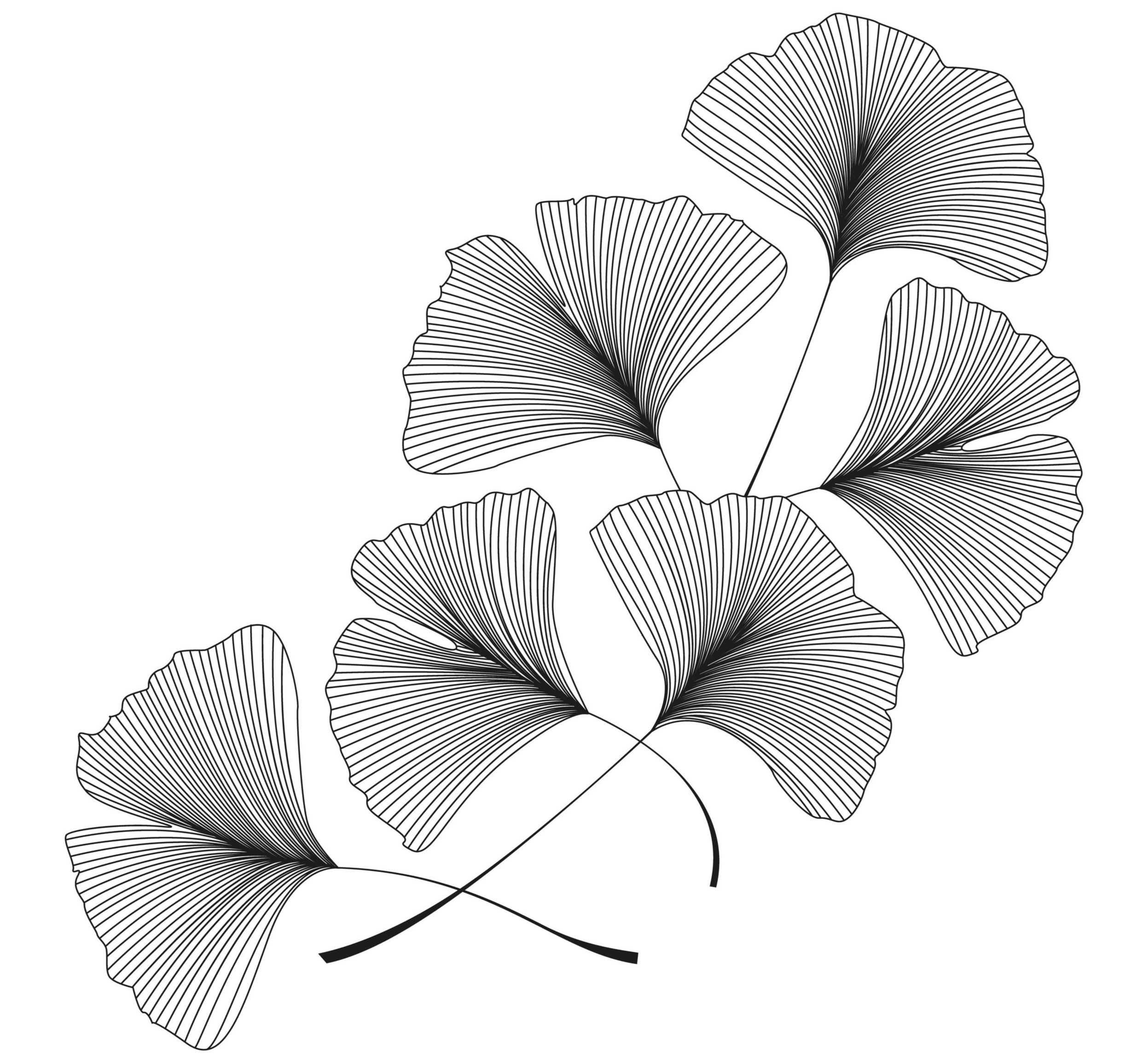 Ginkgo leaves art by Miroslava Hlavacova