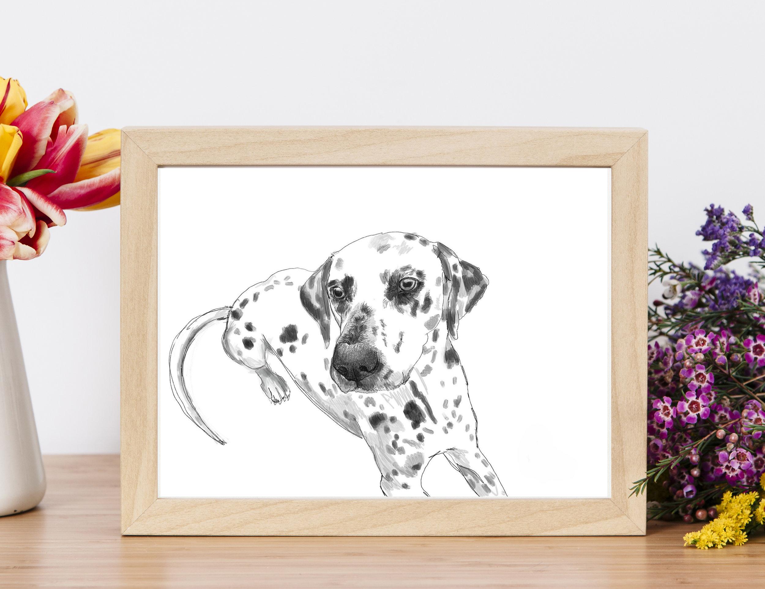 DalmatianProductPhoto3.jpg