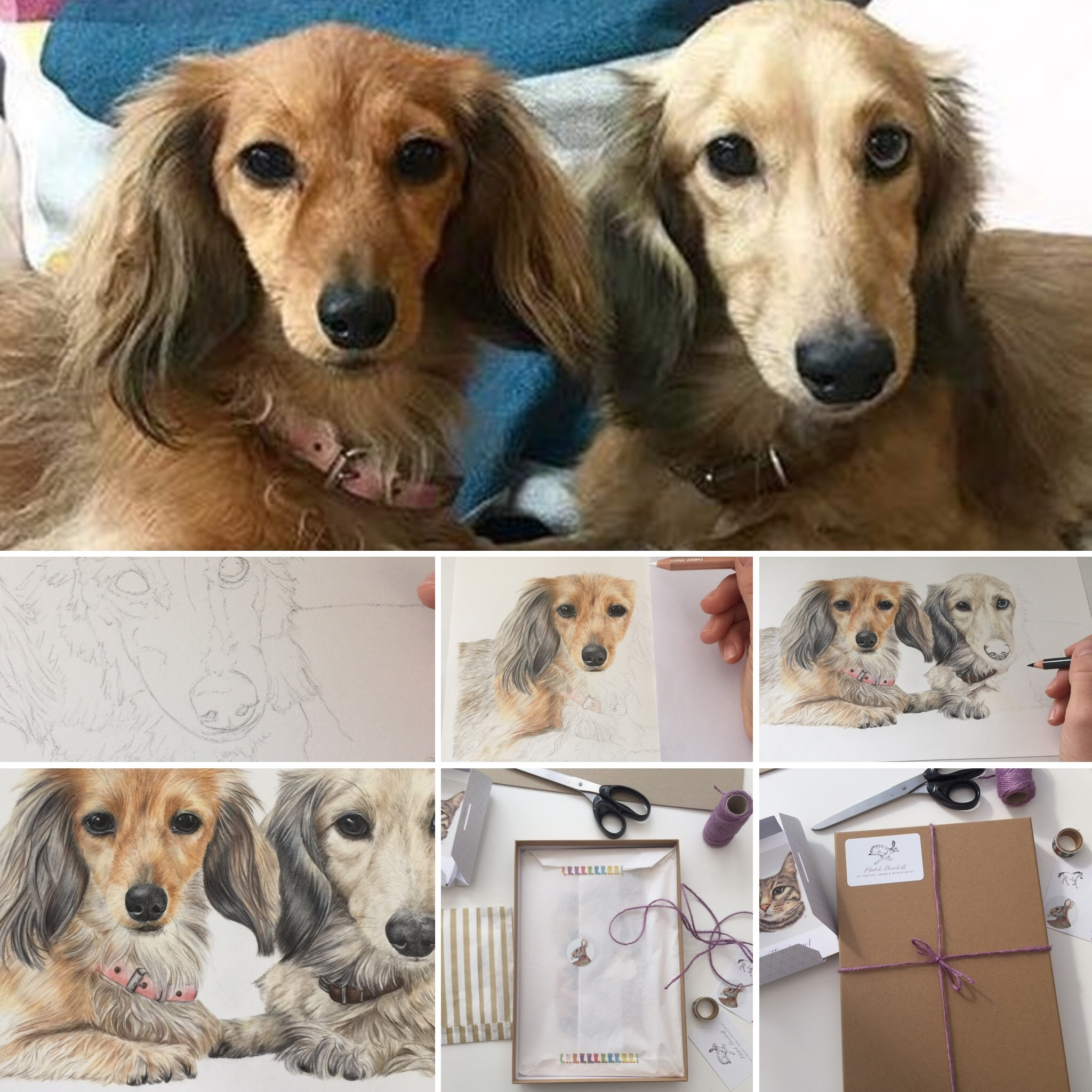 The process of creating a double Dachshund portrait