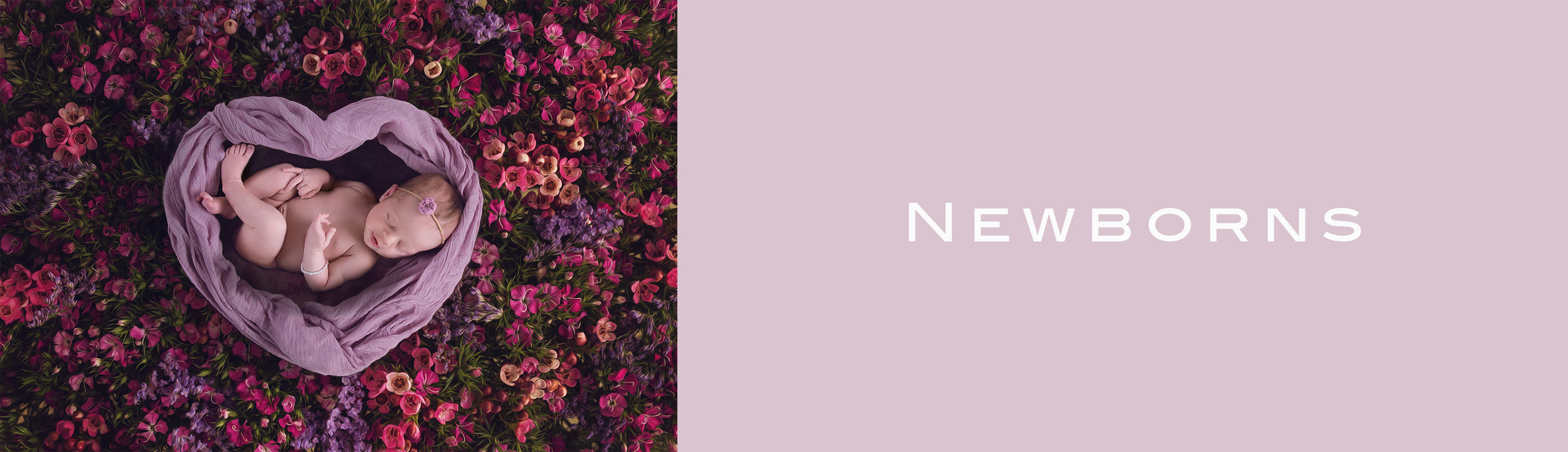 Newborns Header.jpg
