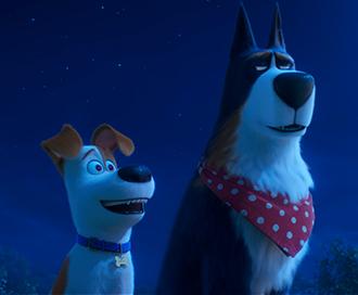 Secret Life Of Pets 2    Universal Pictures  Publicity