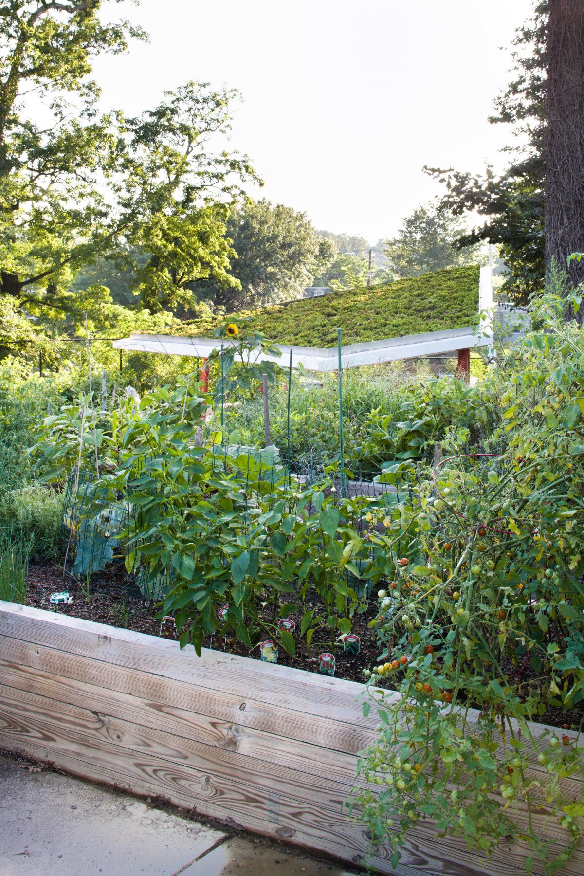 Twin-Oaks-Planters-2.jpg