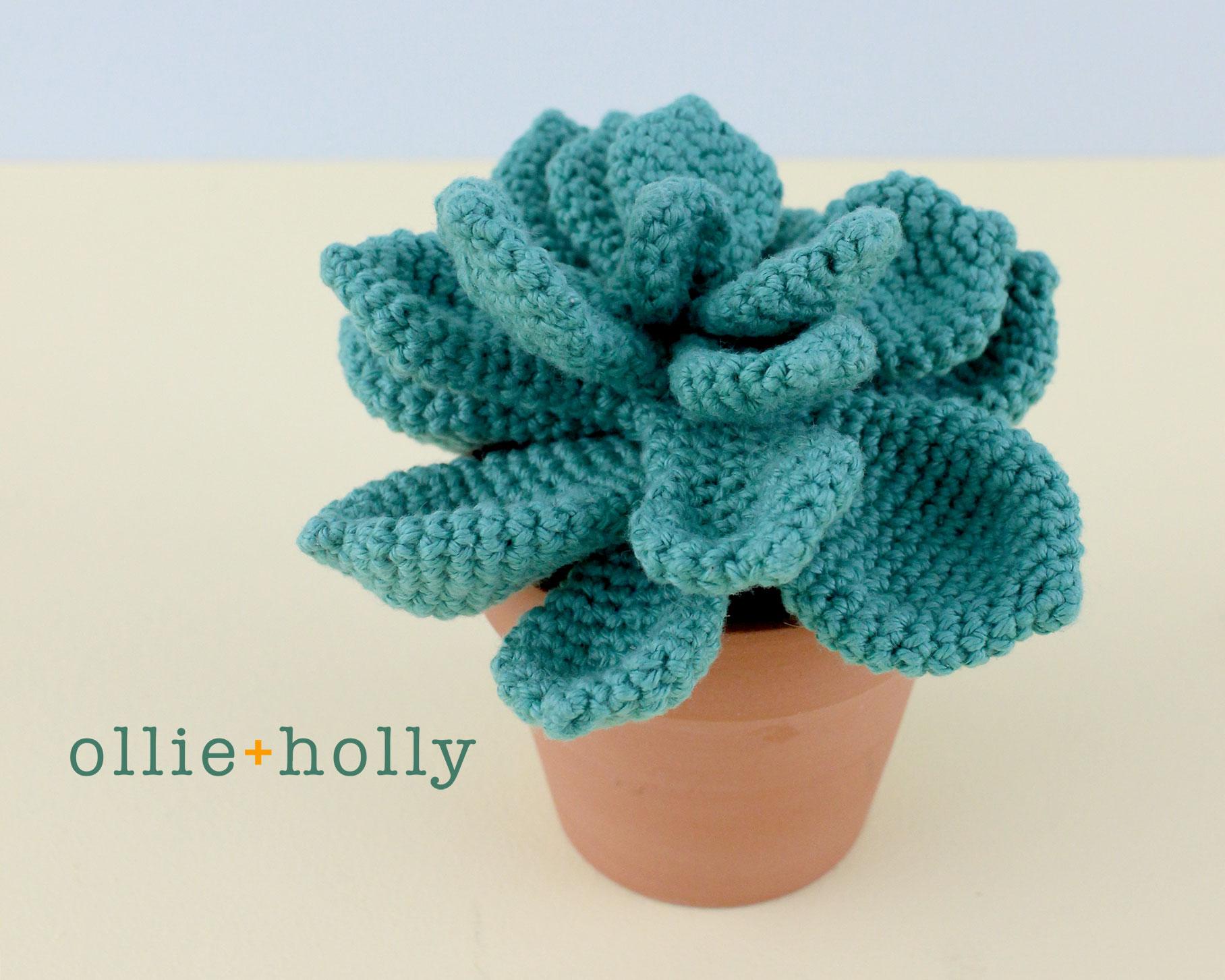 Echeveria Imbricata Blue Rose Crochet Succulent Pattern