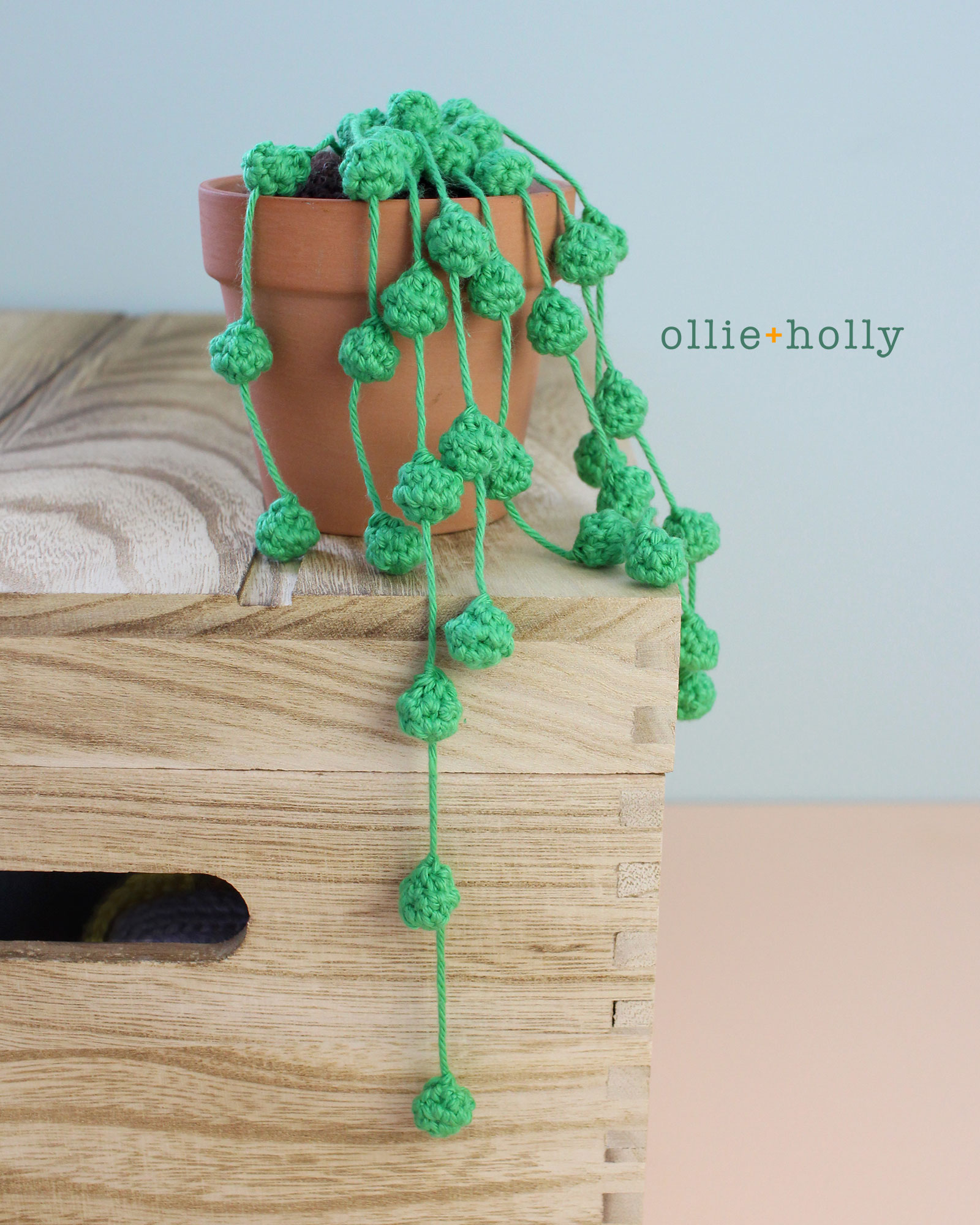 String of Pearls Crochet Succulent Pattern
