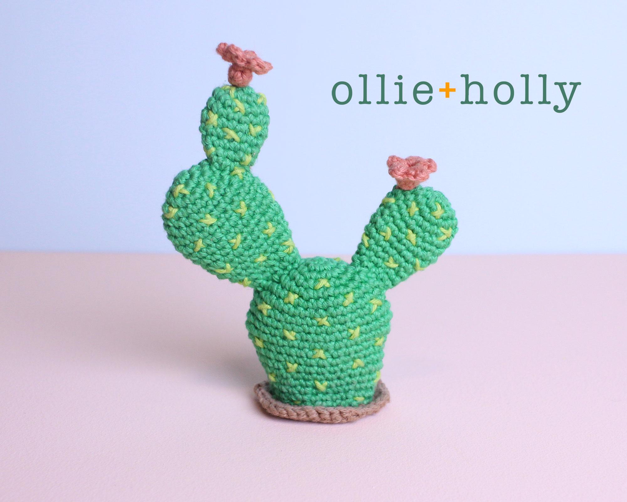 Bunny Ears Cactus Crochet Succulent Pattern
