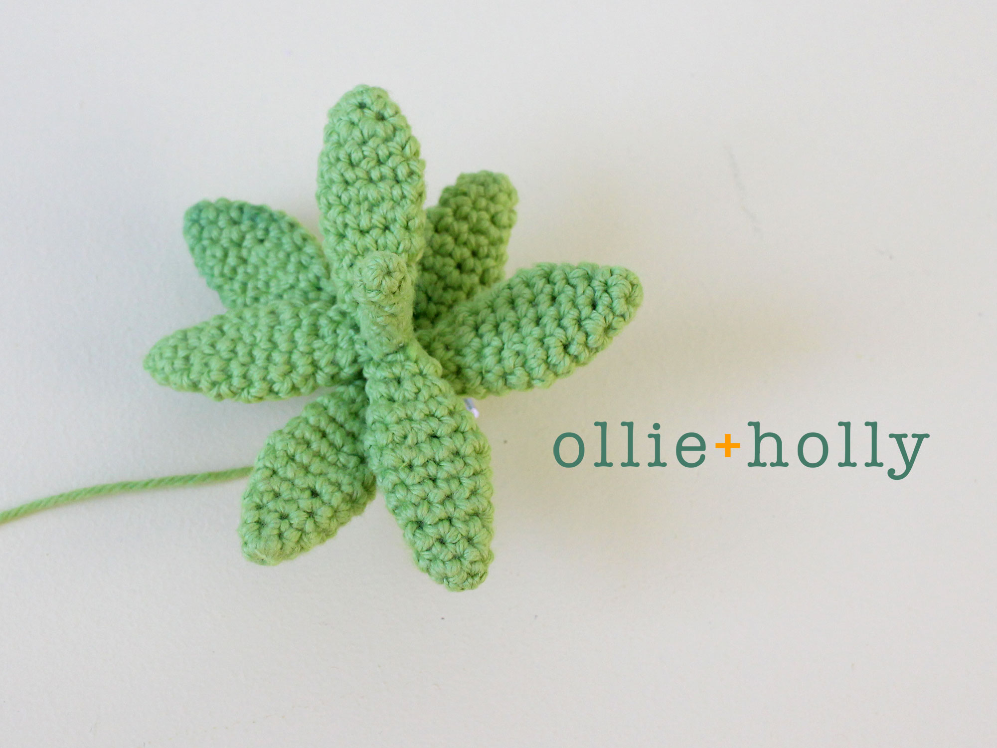Free Sedum Adolphii Golden Glow Succulent Crochet Pattern Part 8