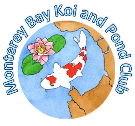 Monterey-Bay-Koi-Pond-logo.png
