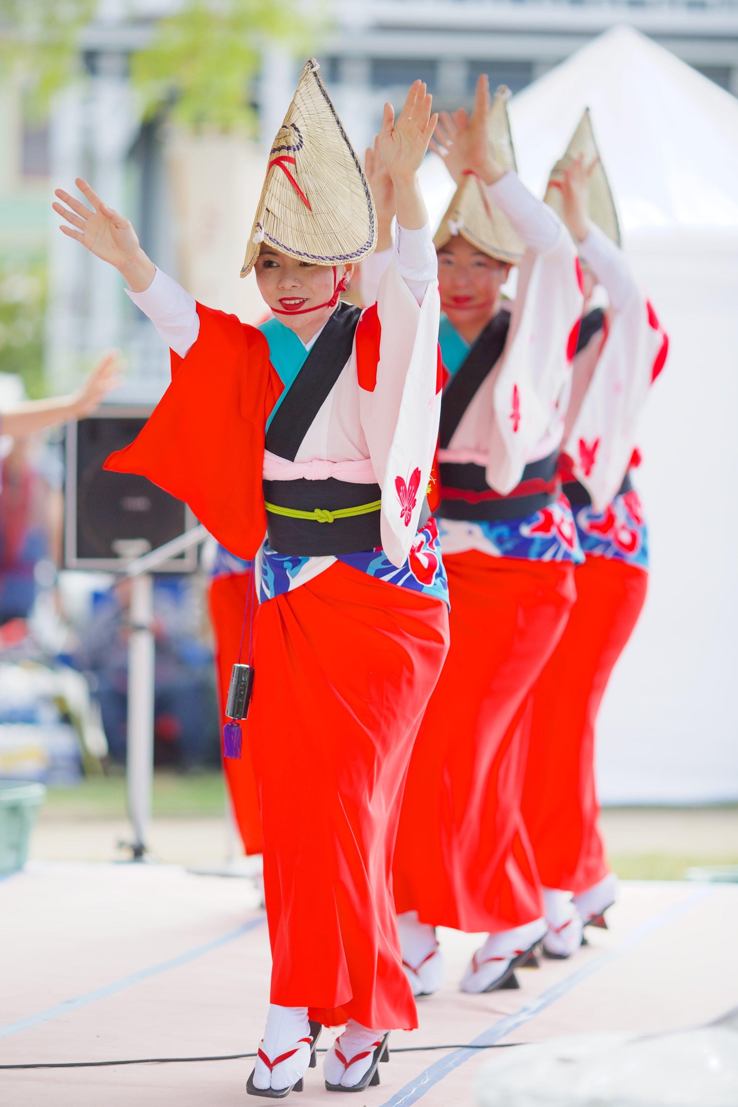 sakura-ren---japanese-cultural-fair-of-santa-cruz-2015_19410043799_o.jpg