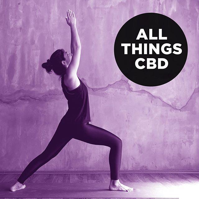 Indulge CBD Wholesale, carrying Adventure CBD, Athletica CBD, Equine CBD, and white label products. #indulgewholesale