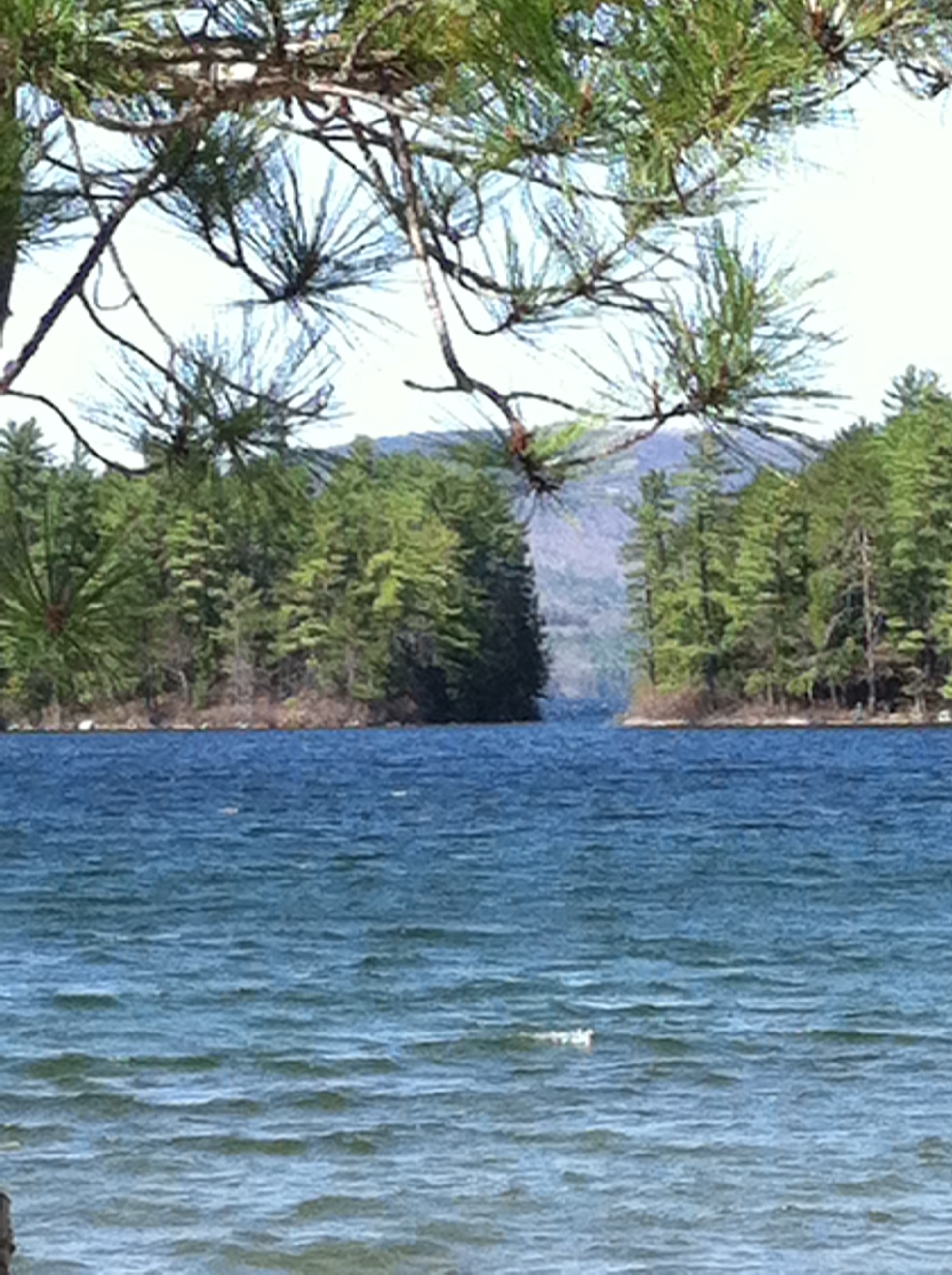 Newfound Lake as seen from Wellington State Park beach area.