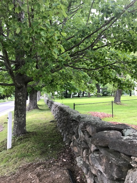 Stone wall at Shaker Village.JPG