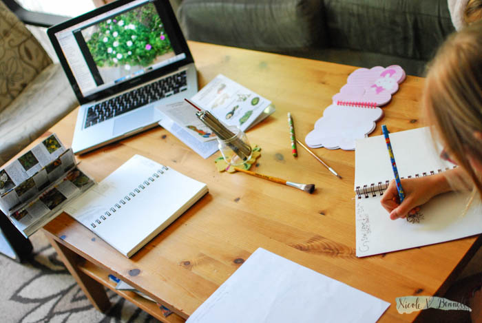 embarking on nature journaling for science-4