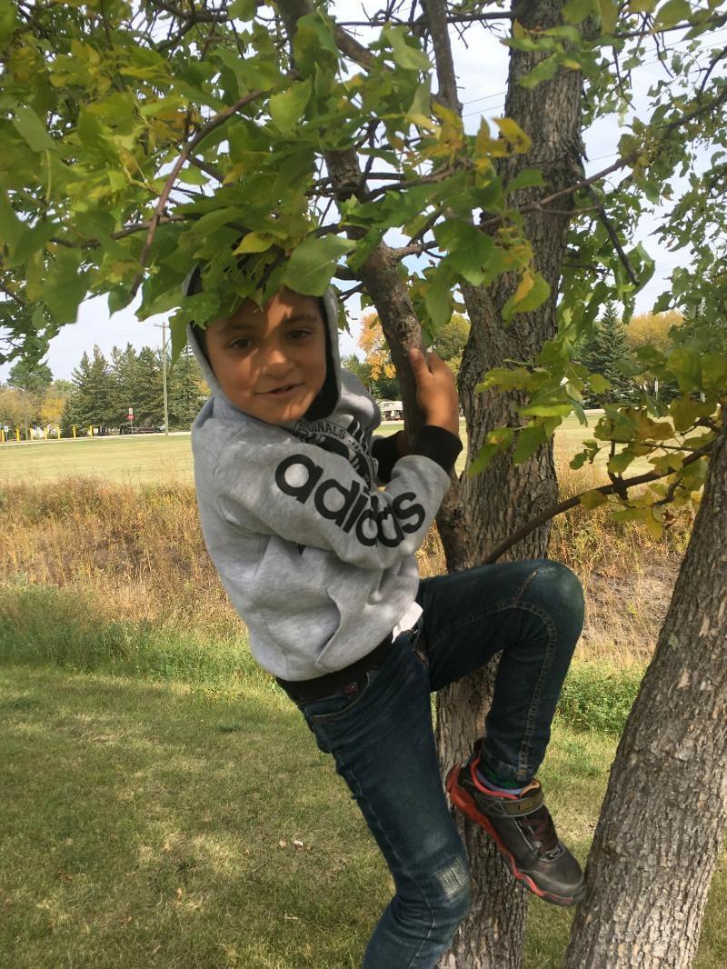 boy in tree.jpg