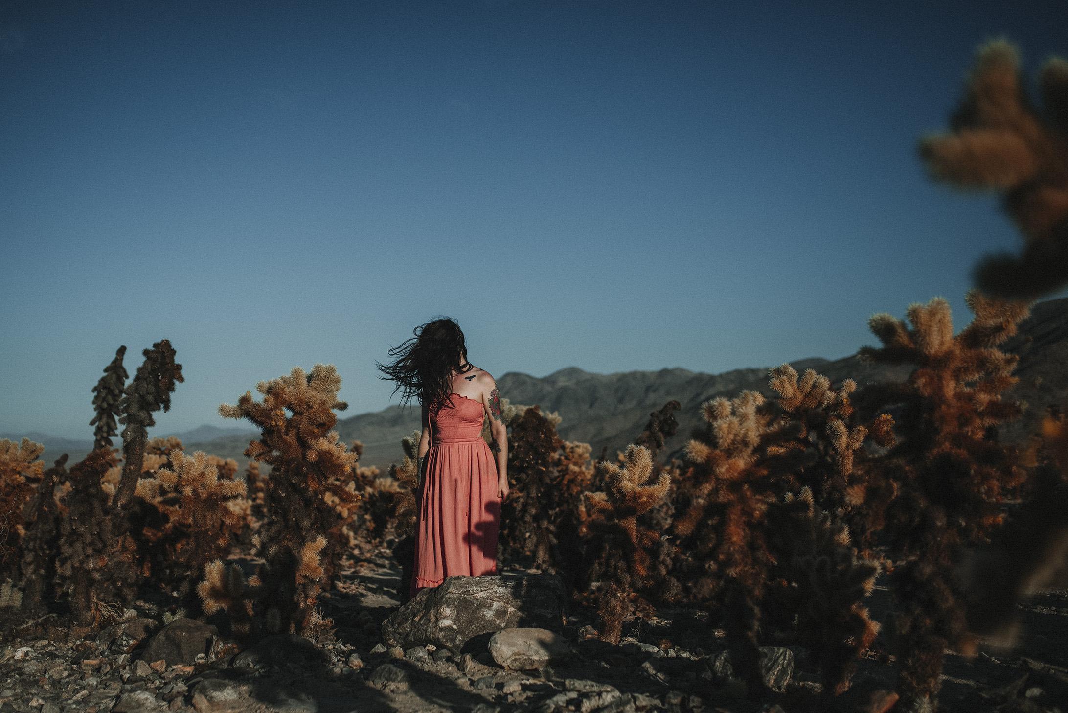 Joshua tree California photo shoot