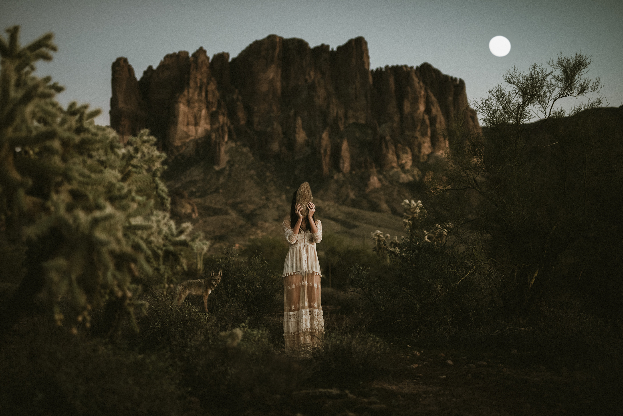 Lost Dutchman State Park Photography