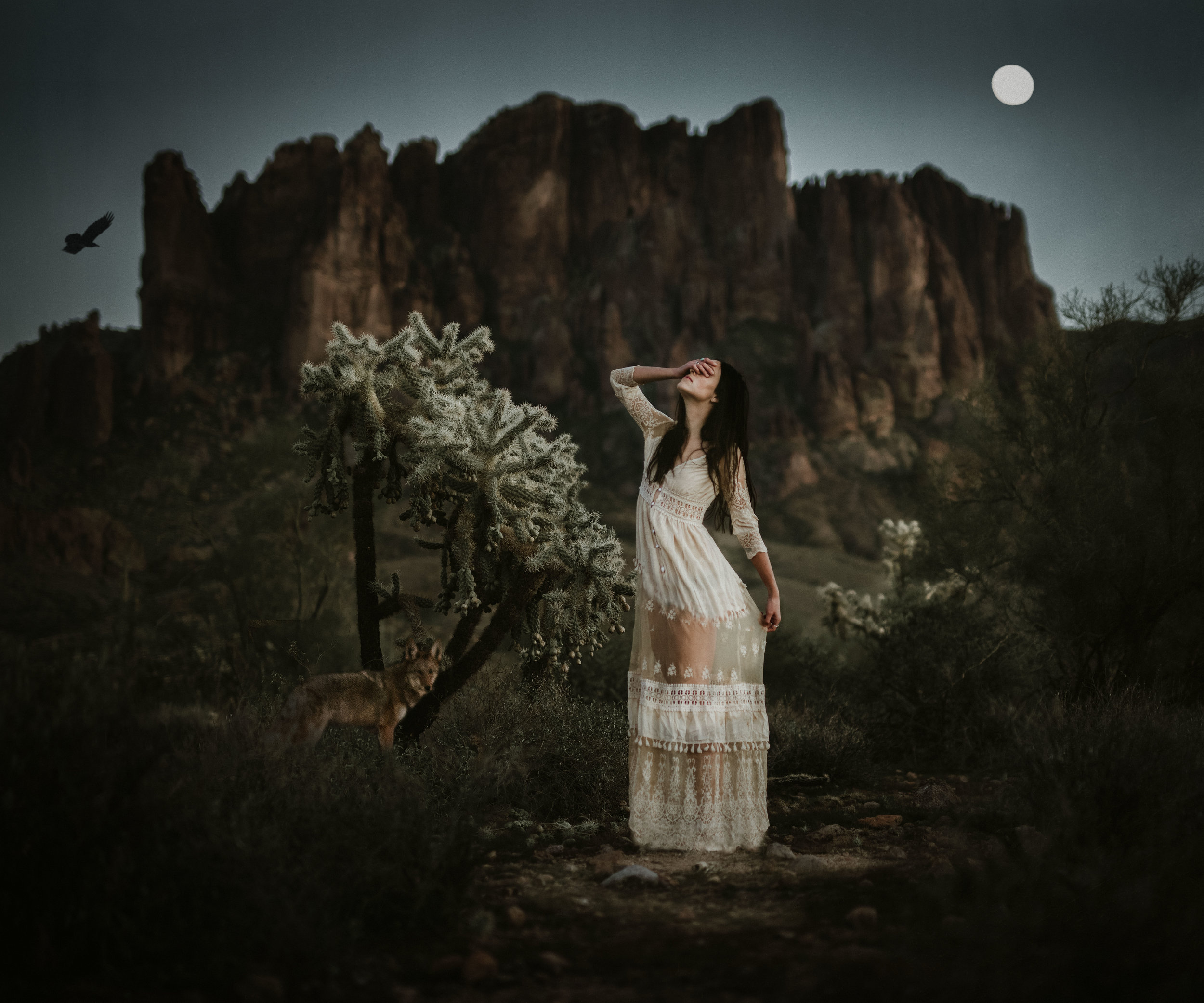 Mesa Arizona Photographer