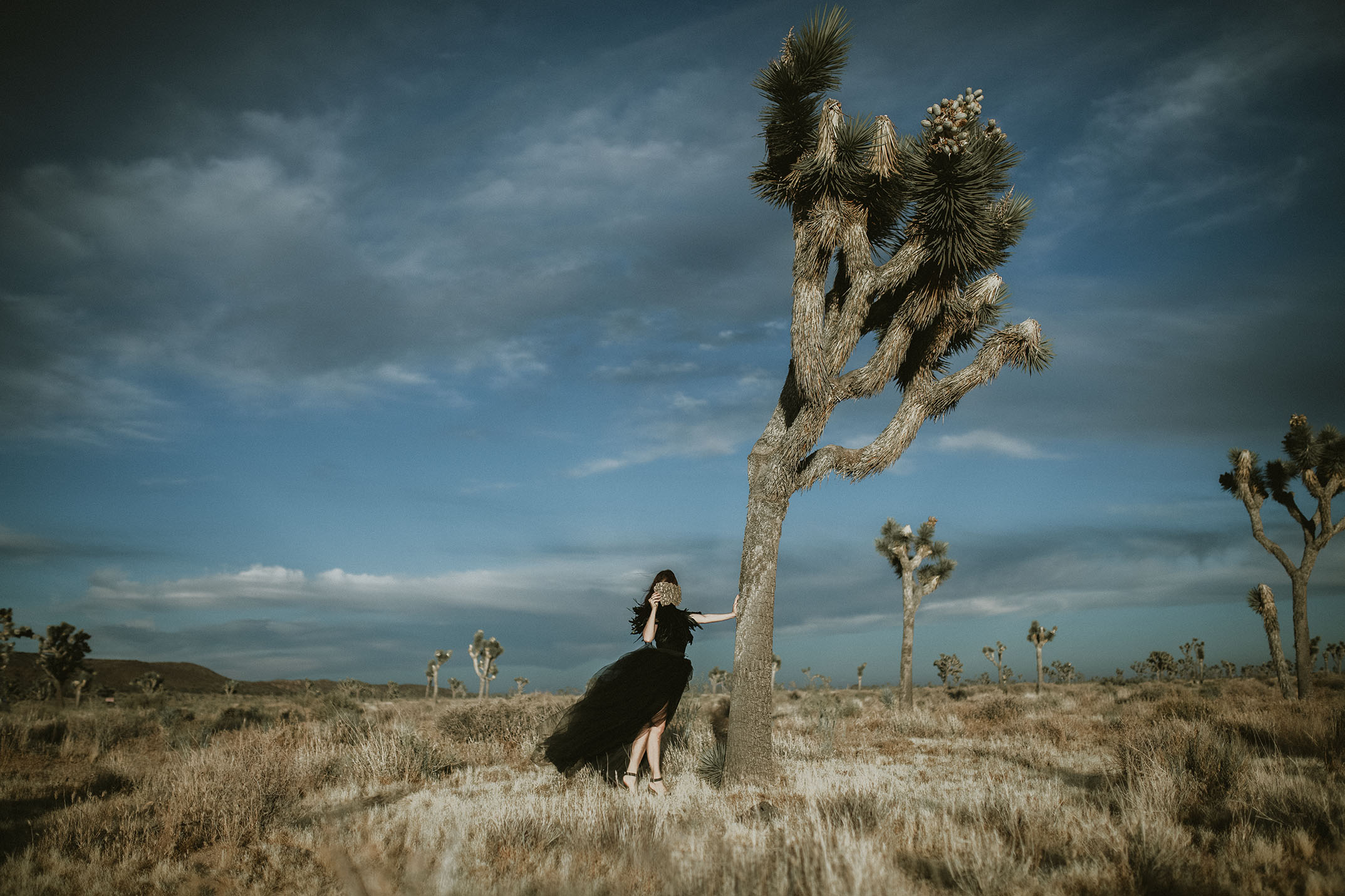 Joshua-tree-wedding-photographer