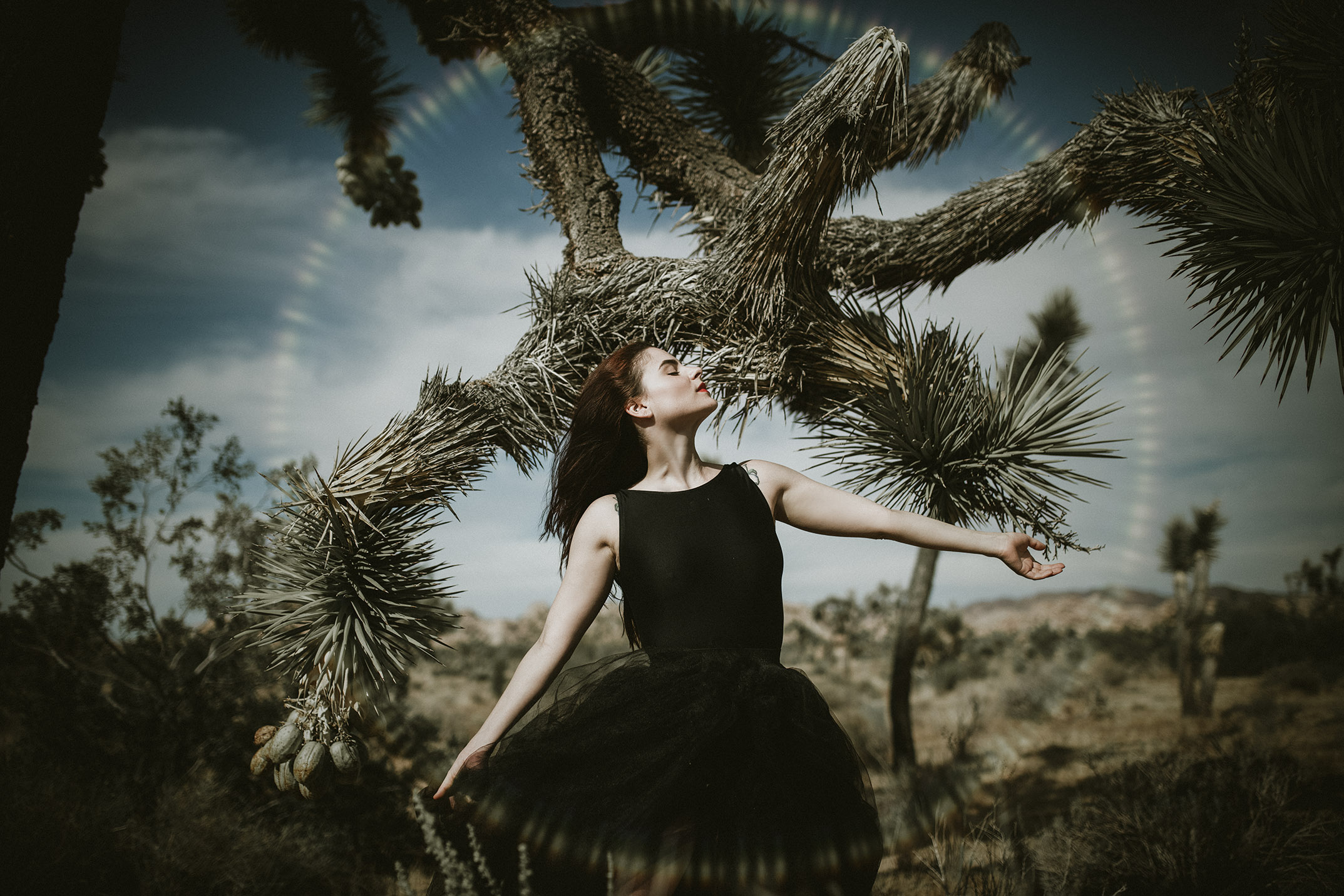 joahua-tree-photographer