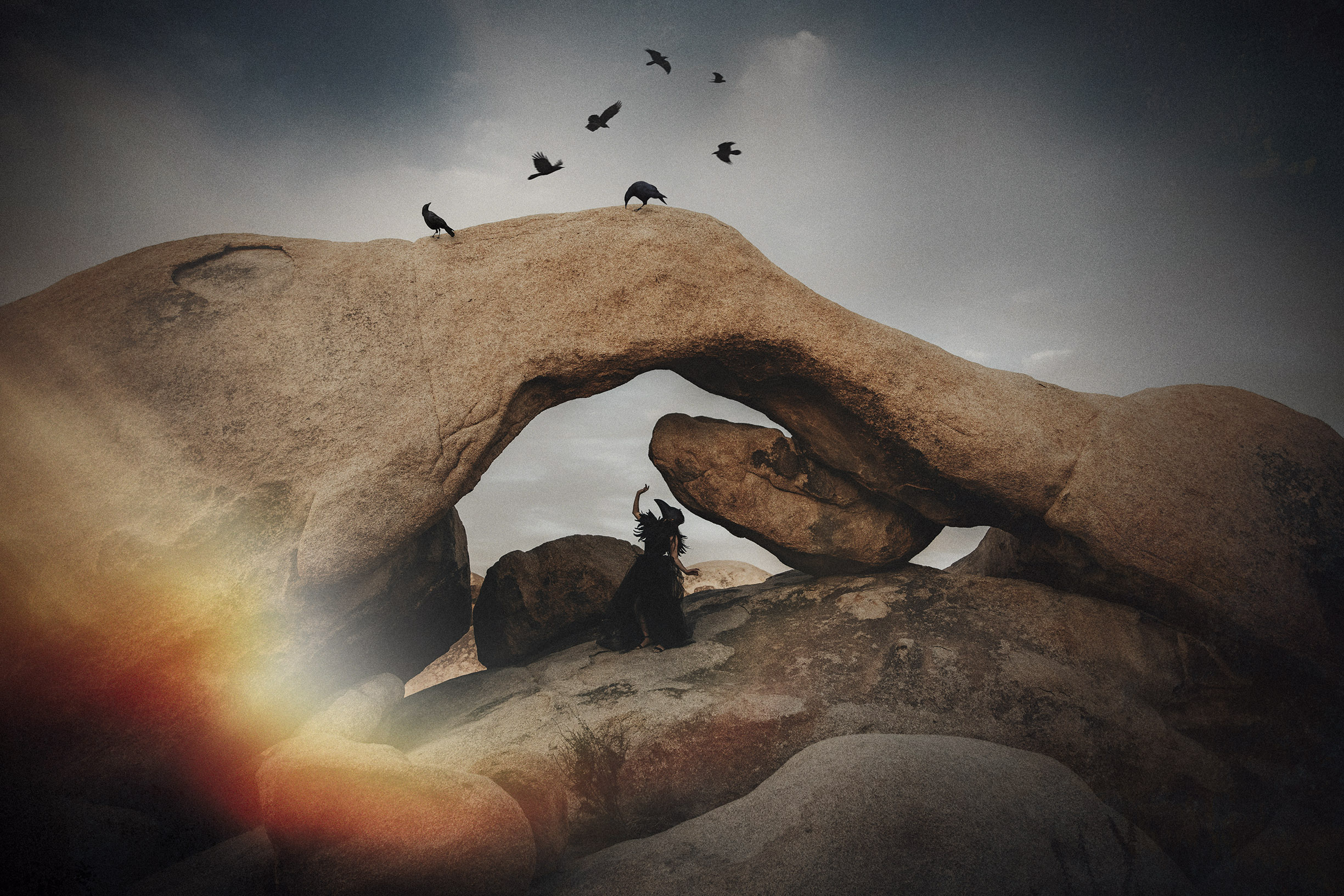 Joshua-tree-Conceptual-Photographer