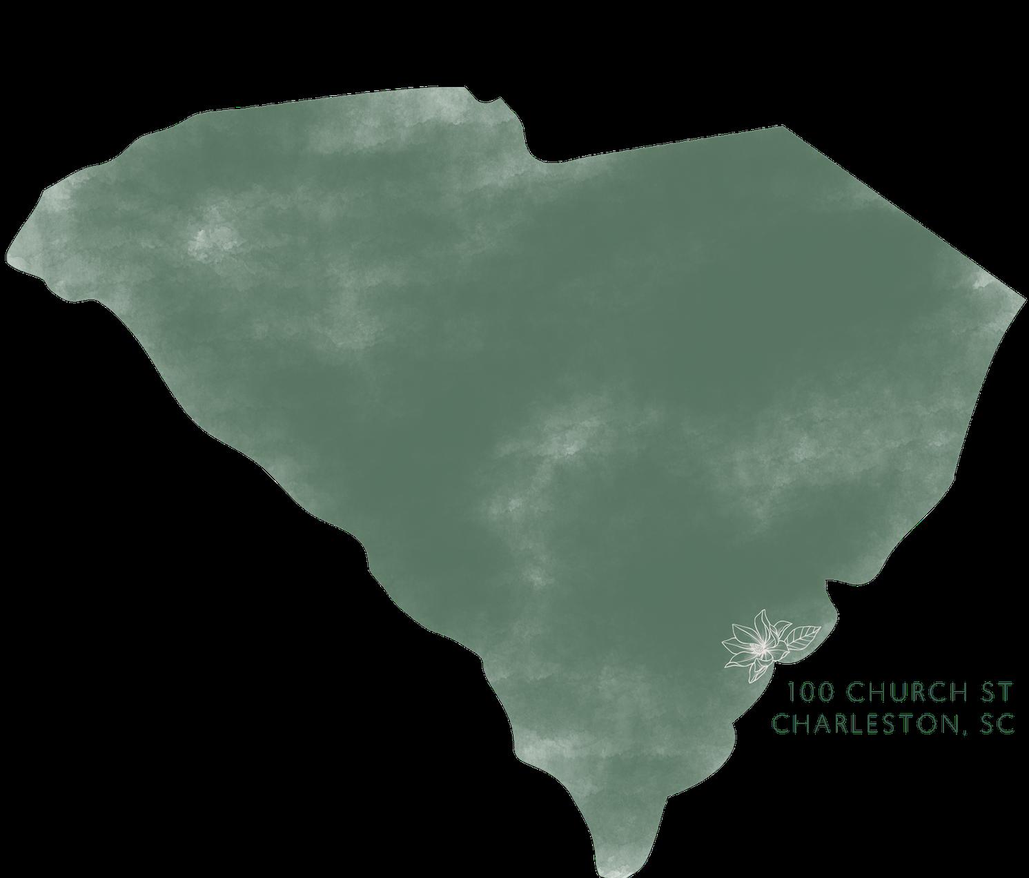 Charleston South Carolina location of Magnolia bride .png