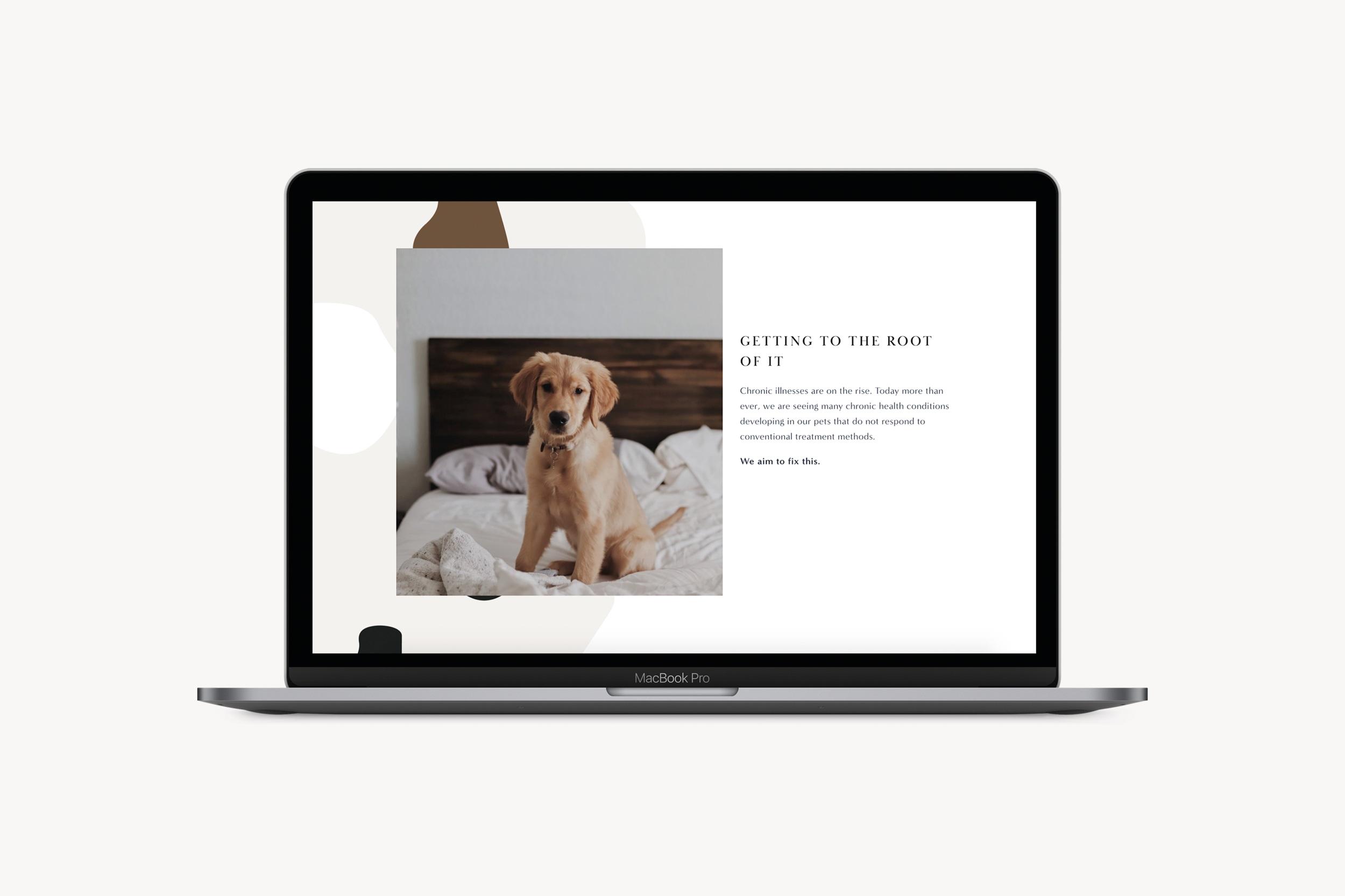 MacBook Design Mockup1.png