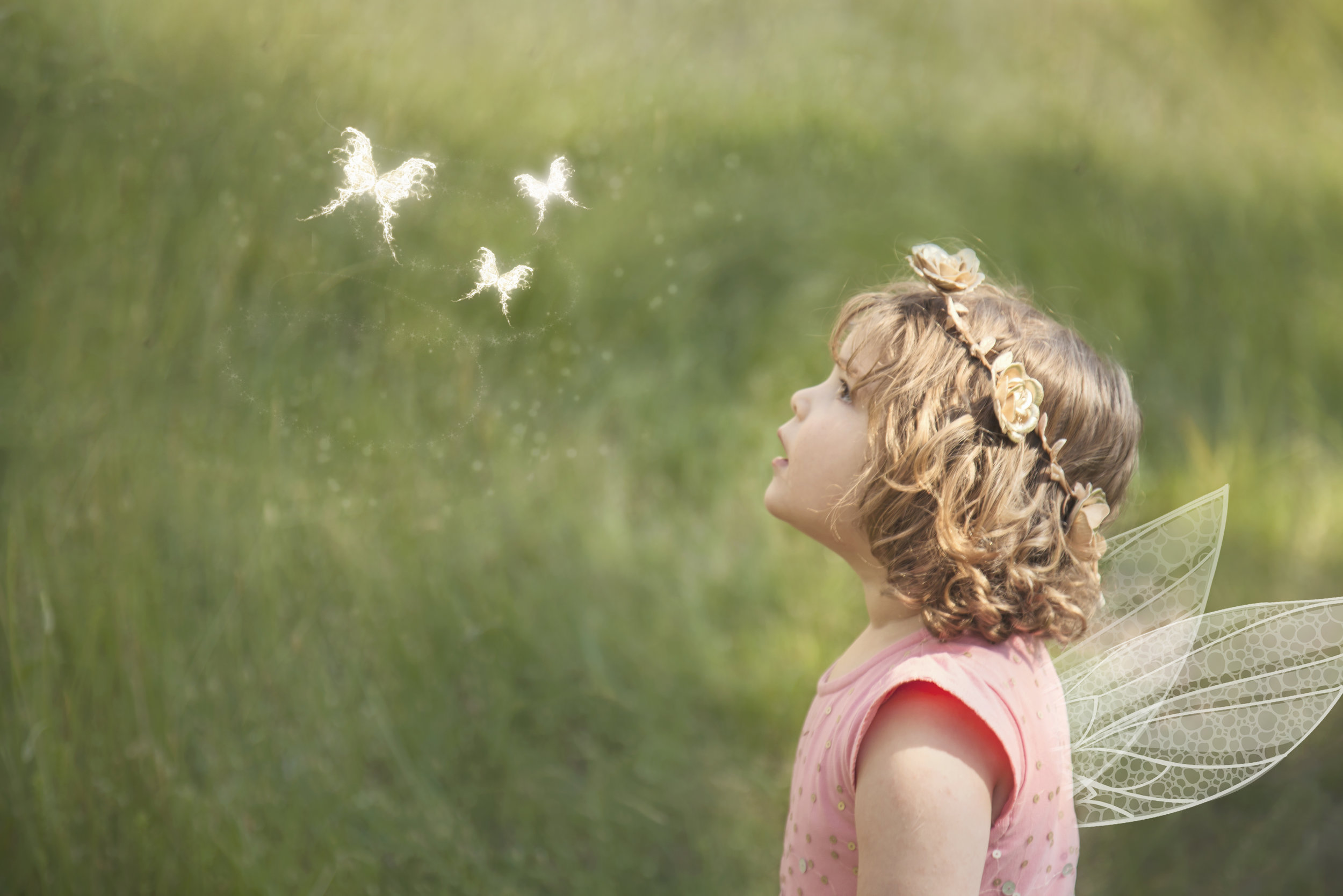 Girl with Fairy Wings and butterflies