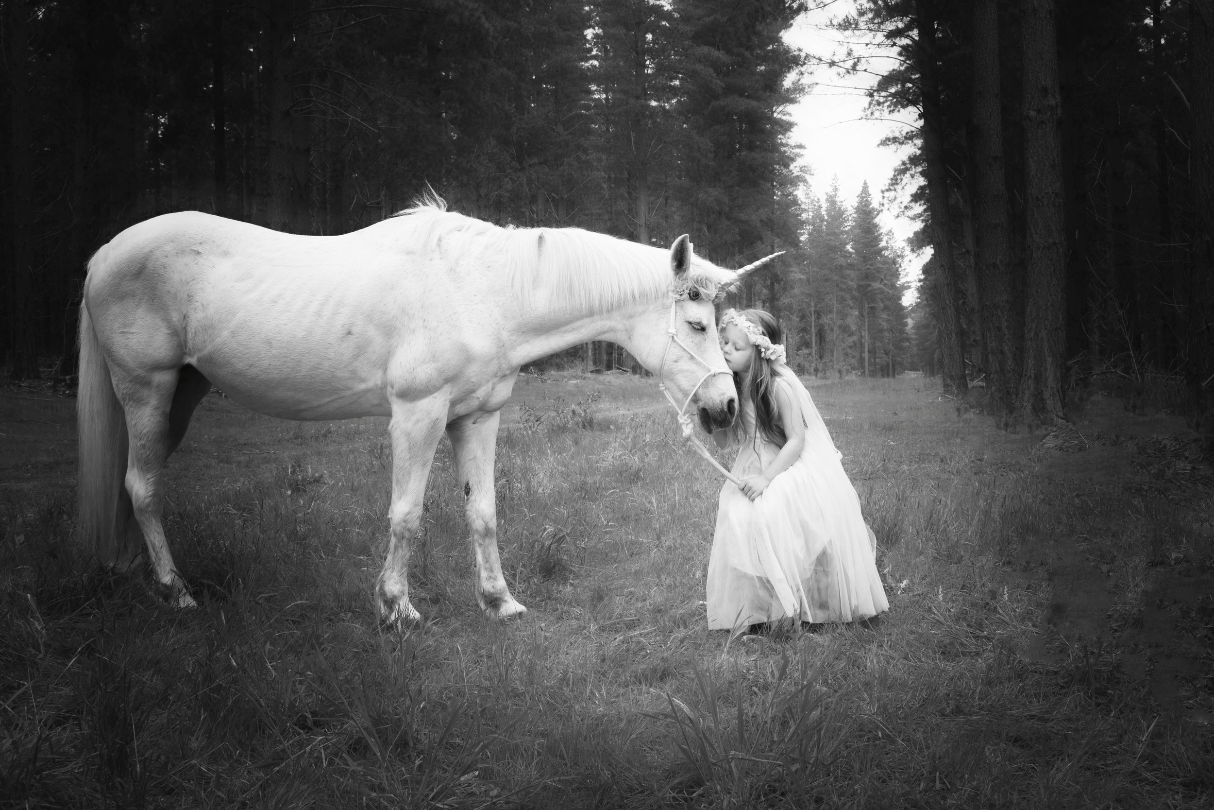 Girl kissing a unicorn