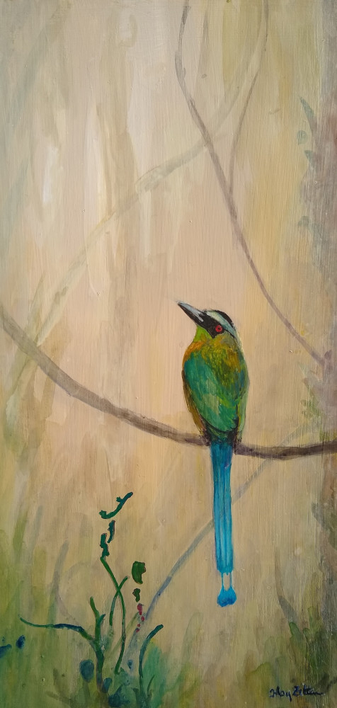 "Lesson's Motmot 12"" x 6"" acrylic on wood panel  2019"