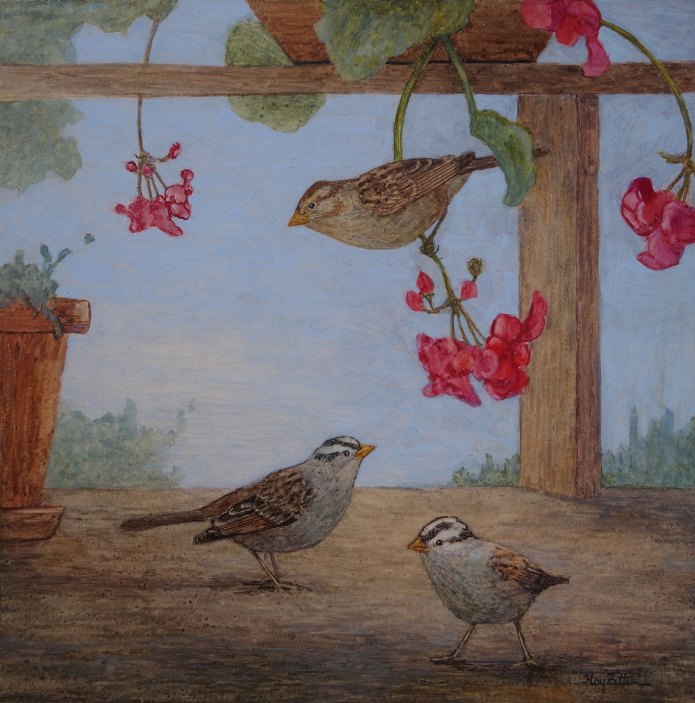 "White-crowned Sparrows 12"" x 12"" watercolor on wood panel"