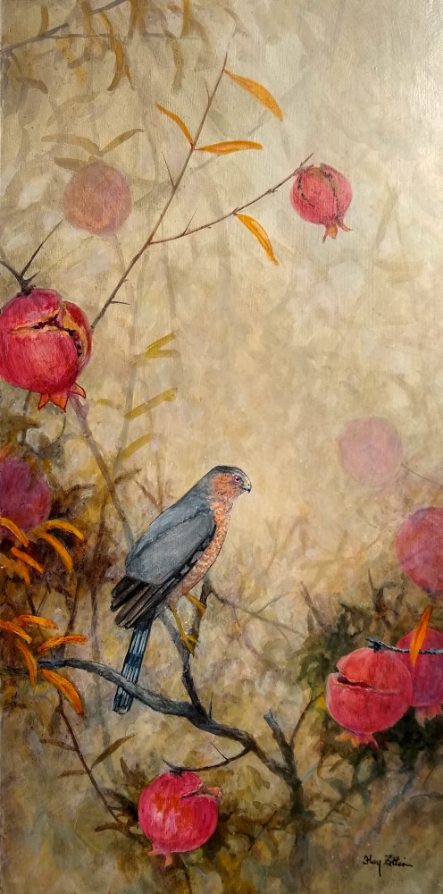 "Cooper's Hawk and Pomegranates 24"" x 12"" acrylic"