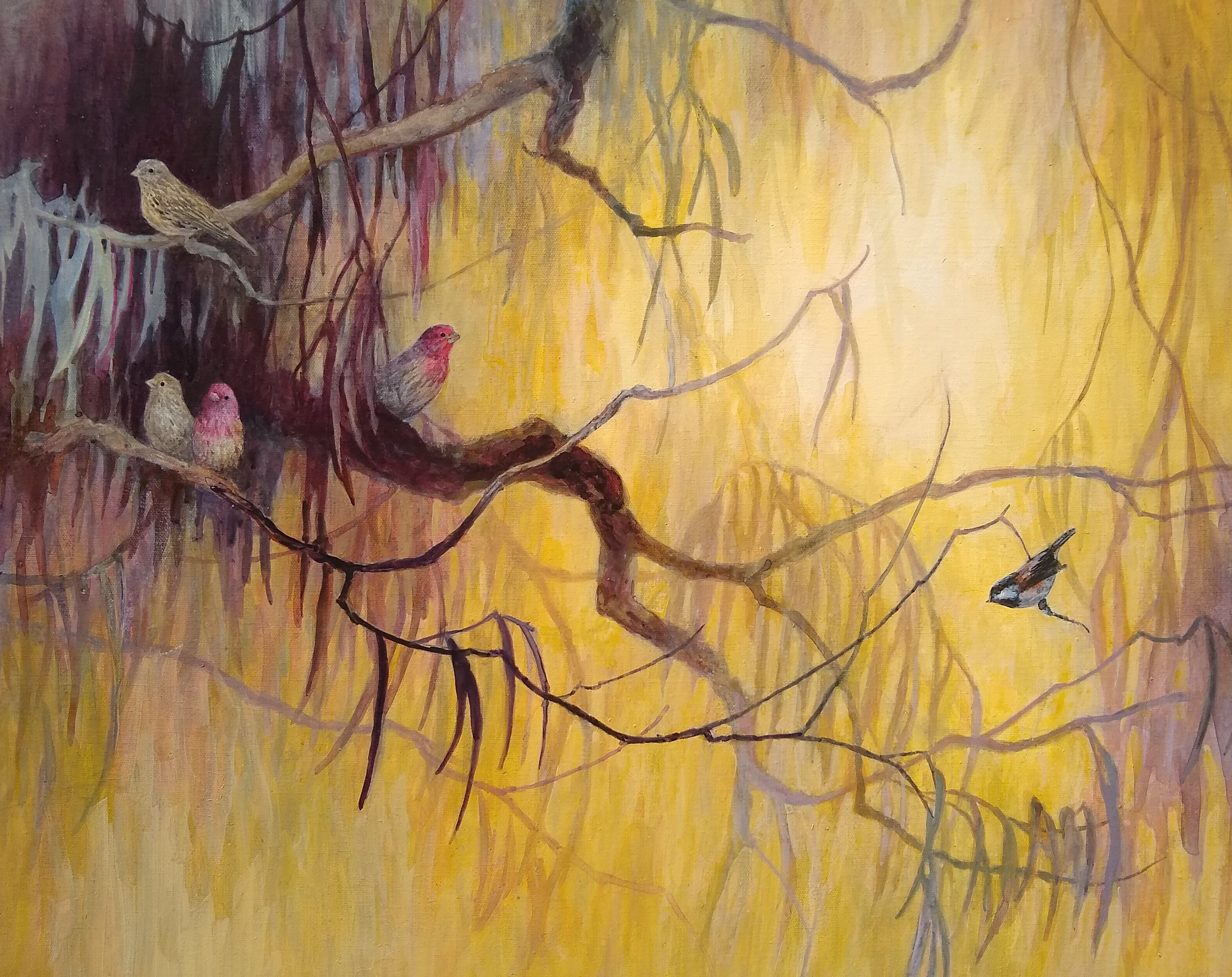 "'House Finches and Chickadee'  22"" x 28"" acrylic"