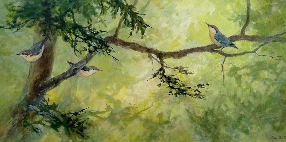 "Pygmy Nuthatches 10"" x 20"" acrylic on wood panel"