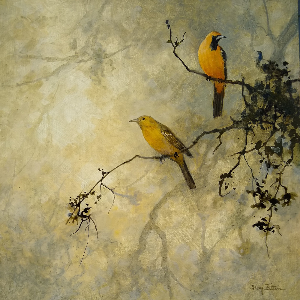 "'Hooded Orioles' 14"" x 14"" acrylic on canvas"
